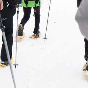 Activités hiver raquettes à neige